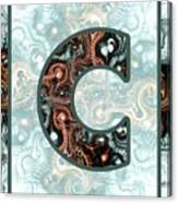 Fractal - Alphabet - C Is For Complexity Canvas Print
