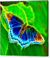 Fractal Butterfly Canvas Print