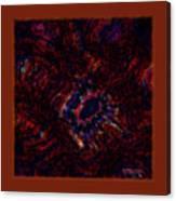 Fractal Centrifuge Canvas Print