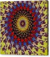 Fractal Outburst Catus 1 No. 10 -sunsettia For Lea V A Canvas Print