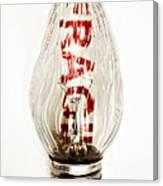 Fragile Light Bulb Canvas Print