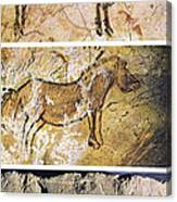France And Spain: Cave Art Canvas Print
