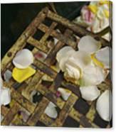 France Flower Petals, Rose, Still-life Canvas Print