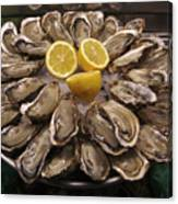 France, Paris Oysters On Display Canvas Print