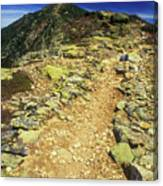 Franconia Ridge Alpine Trail Canvas Print