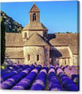 All Purple, Cistercian Abbey Of Notre Dame Of Senanque, France  Canvas Print