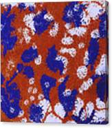 Frantic Delirium - V1lle90 Canvas Print