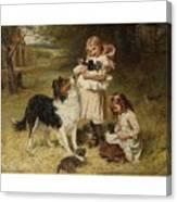 Frederick Morgan  R O I  British  1847 1927  And Allen Culpepper Sealy  British  1850 1927  Rival Fa Canvas Print