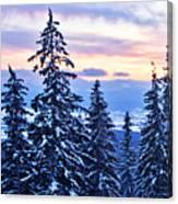 Freezing Sunset 14 Canvas Print