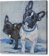 French Bulldog Mom And Pup Canvas Print