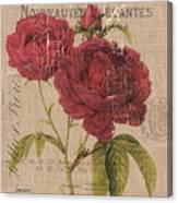 French Burlap Floral 3 Canvas Print