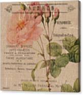 French Burlap Floral 4 Canvas Print