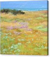 French Coastal Landscape Canvas Print