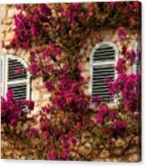 French Windows Canvas Print