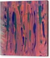 Frenesia Da Shopping Canvas Print