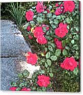 Fresco Roses Canvas Print