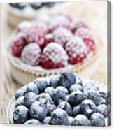 Fresh Berry Tarts Canvas Print
