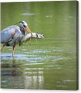 Fresh Catch Of The Day Canvas Print