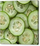 Fresh Cucumbers Canvas Print