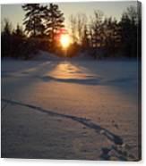 Fresh Deer Tracks At Sunrise Canvas Print