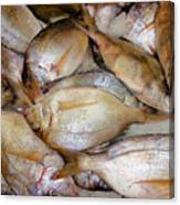 Fresh Fishes In A Market 4 Canvas Print