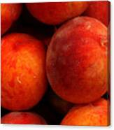Fresh Fuzzy Peaches Canvas Print