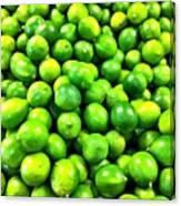 Fresh Lemons Canvas Print