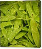 Fresh Peas Canvas Print