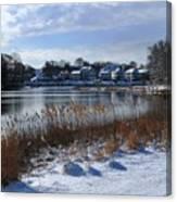 Fresh Snow Along The Creek Canvas Print