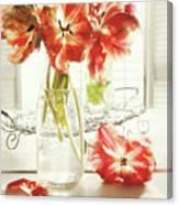 Fresh Spring Tulips In Old Milk Bottle  Canvas Print