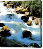 Fresh Water - Colorado Rockies Canvas Print