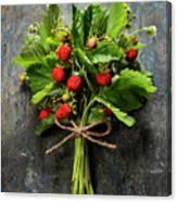 fresh Wild strawberries on wooden background  Canvas Print