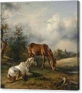 Friedrich Gauermann A Grey And A Chestnut In The Pasture  1825 Canvas Print