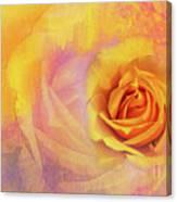 Friendship Rose Textured Canvas Print
