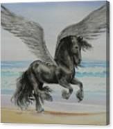 Friesian Pegasus Canvas Print