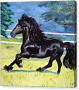 Friesian, Run Like The Wind Canvas Print