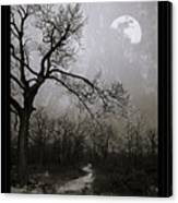 Frigid Moonlit Night Canvas Print