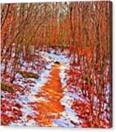 Frigid Walk Canvas Print