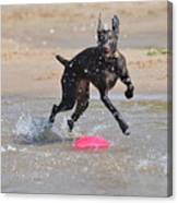 Frisbee On The Beach Canvas Print