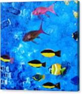 Frivolity Downunder Canvas Print