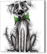 Frizzy Dog Canvas Print