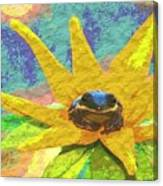 Frog A Lilly 3 - Photosbydm Canvas Print