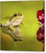 Frog And Fuchsia With Reflections Canvas Print