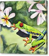 Frog And Plumerias Canvas Print