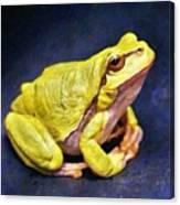 Frog - Id 16236-105000-7516 Canvas Print