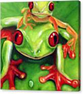 Frog Rodeo Canvas Print