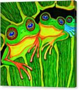 Froggie Trio Canvas Print