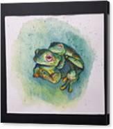 Frogs Of Borneo L Canvas Print