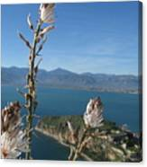 From Atop Nafplion Canvas Print