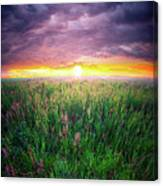 From Dream To Dream  Canvas Print